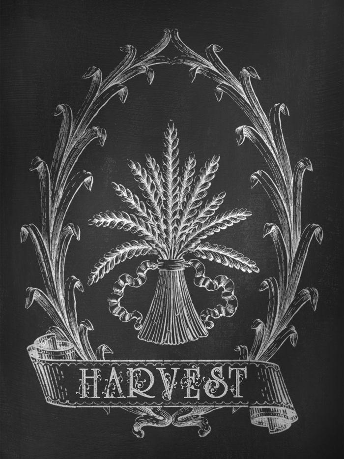Harvest Sign On Barnwood For Fall Front Porch Decor: Best 25+ Thanksgiving Chalkboard Ideas On Pinterest