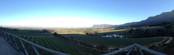 What a view!!! #AttheDam #Kleinconstantia #Vineyards