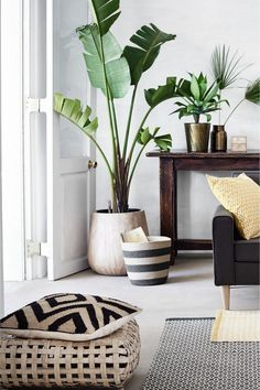 Pflanzen Halten Nicht Nur Die Feuchtigkeit Im Raum, Sondern Sehen Auch Toll  Aus Und Geben Awesome Ideas