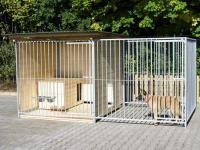 Hundezwinger 2x4m, halb überdacht, Sonderserie