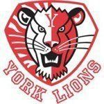 The Men's & Women's Volleyball teams have their Quarter Final Play-off games tomorrow! Check them out! http://yorkulions.ca