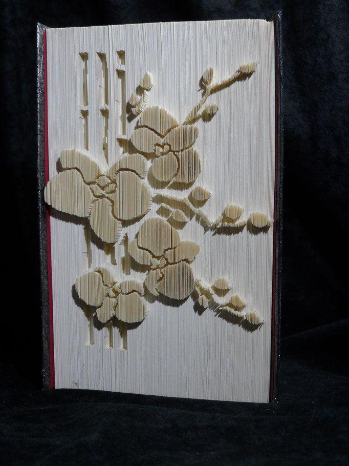 Orchidee An Bambus. Ein Eyecatcher In Jedem Bücherregal. Buchfaltkunst VS  Galerie   Alte