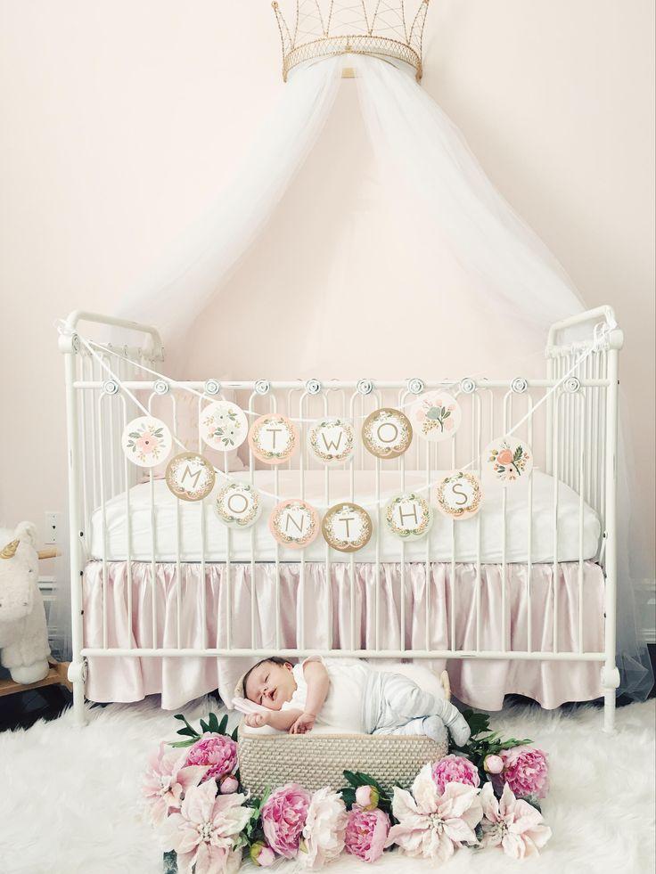 51 Best Princess Nursery Ideas Images On Pinterest