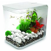 How to set up a betta fish tank  Found at: http://japanesefightingfish.org/setting-up-a-betta-fish-tank/#ixzz3Qh5WpAAd