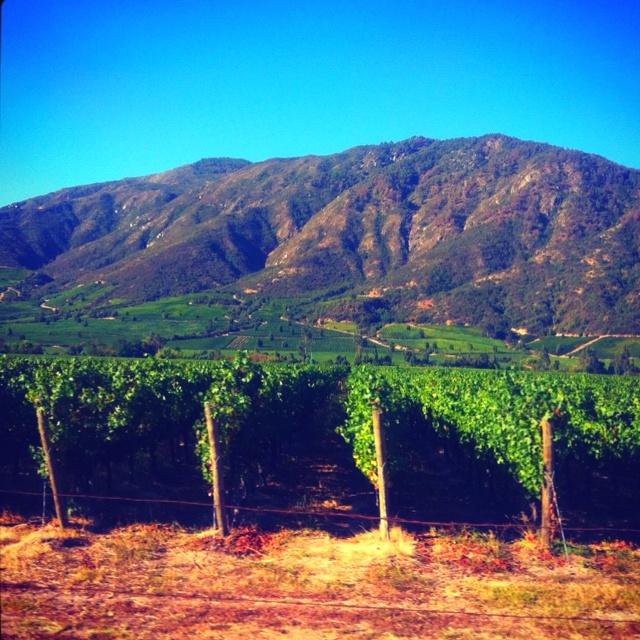 Colchagua Valley in Central Chile - #pinterest-colchagua