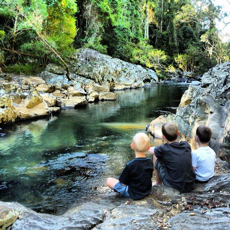 Eungella, Mackay, Australia.
