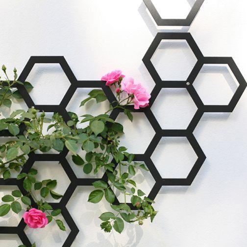 Laat een muur of wand begroeien met klimplanten met dit prachtige klimplanten rek met honingraat vorm. Met de modulaire elementen van Flora heb je in een handomdraai een prachtige wand om naar te kijken, ook als er nog geen planten gegroeid zijn. Maak het klimplanten rek zo groot als je zelf wil! Ligt 3cm van de muur af, zodat planten er makkelijk tussendoor kunnen groeien. De flora coma bevestig je met schroeven in de muur of wand.   Afmetingen: 53x97cm Aantal 6-kanten:18 Afstan...