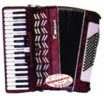 Parrot Piano Accordion 72 Bass 34 Keys T5004 by Parrot. $674.95. Parrot Piano Accordion 72 Bass 34 Keys T5004. Prodeced in the world largest accordion factory Parrot accordions have been in production sonce 1952. This Accordion inlcudes case and straps.