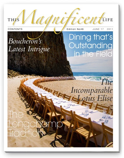 ThisMagnificentLife issue 46 cover featured Outstanding in the Field.