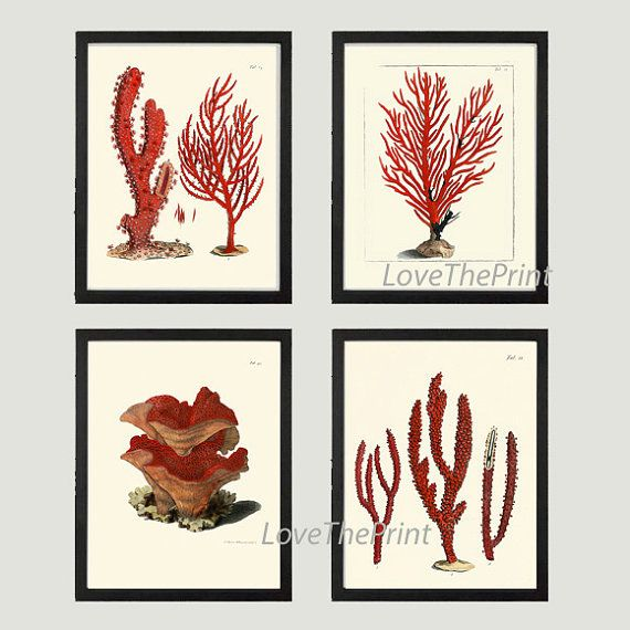 Beautiful set of 4 prints based on antique coral illustration from 1786. Wonderful details, colors and natural history feel. This listing is for a set of 4 Prints. If you would like to choose different prints from my shop to make a set of 4, during the check-out process, please let me know which print titles in the message to seller. To see all matching prints from this collection: https://www.etsy.com/shop/LoveThePrint/search?search_query=ellis&order=da...