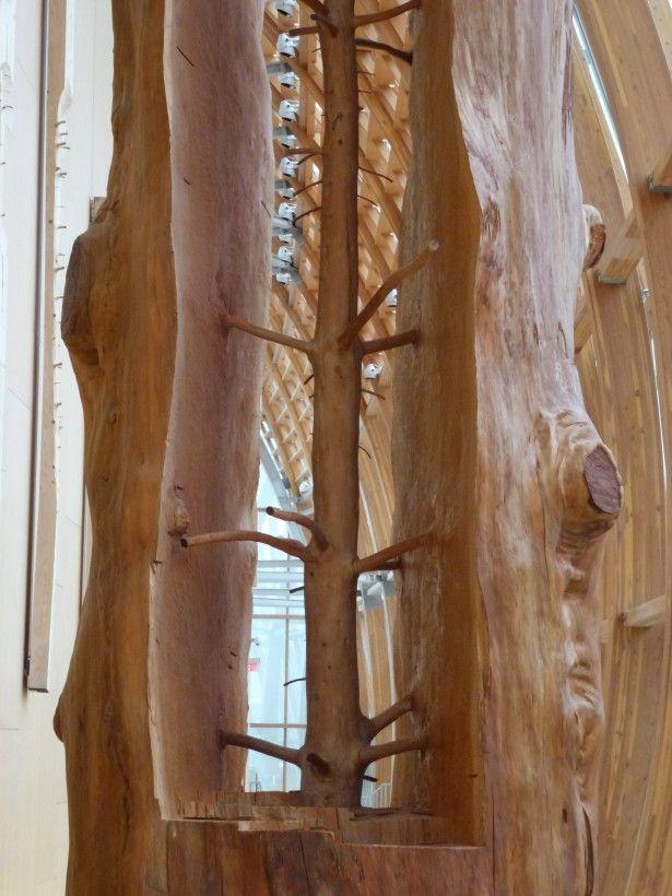 Les jeunes arbres à l'intérieur de leurs vieux troncs