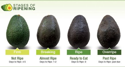 Do you know your avocado facts? We recently got the avocado 101 from Hass Avocados on how to pick an avocado, how to best ripen it, store it and much more!
