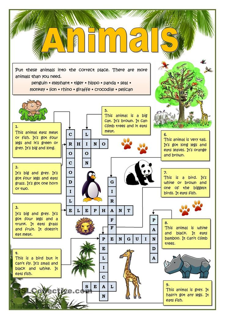 animals wordsearch