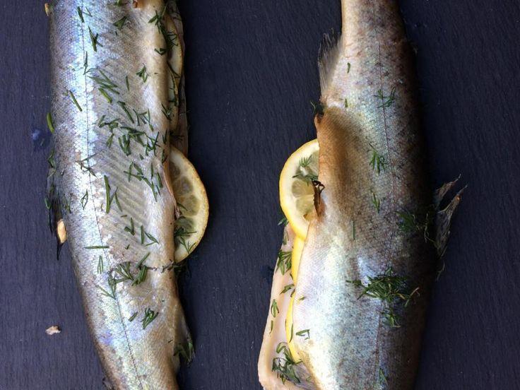 Forel op cederhouten plankje op de BBQ is een lekker gerecht. Dit recept vereist een dunne, schone, onbehandelde cederplank om de vis op te leggen tijdens het barbecueën. De rook van het hout verbetert de smaak van de vis echt.