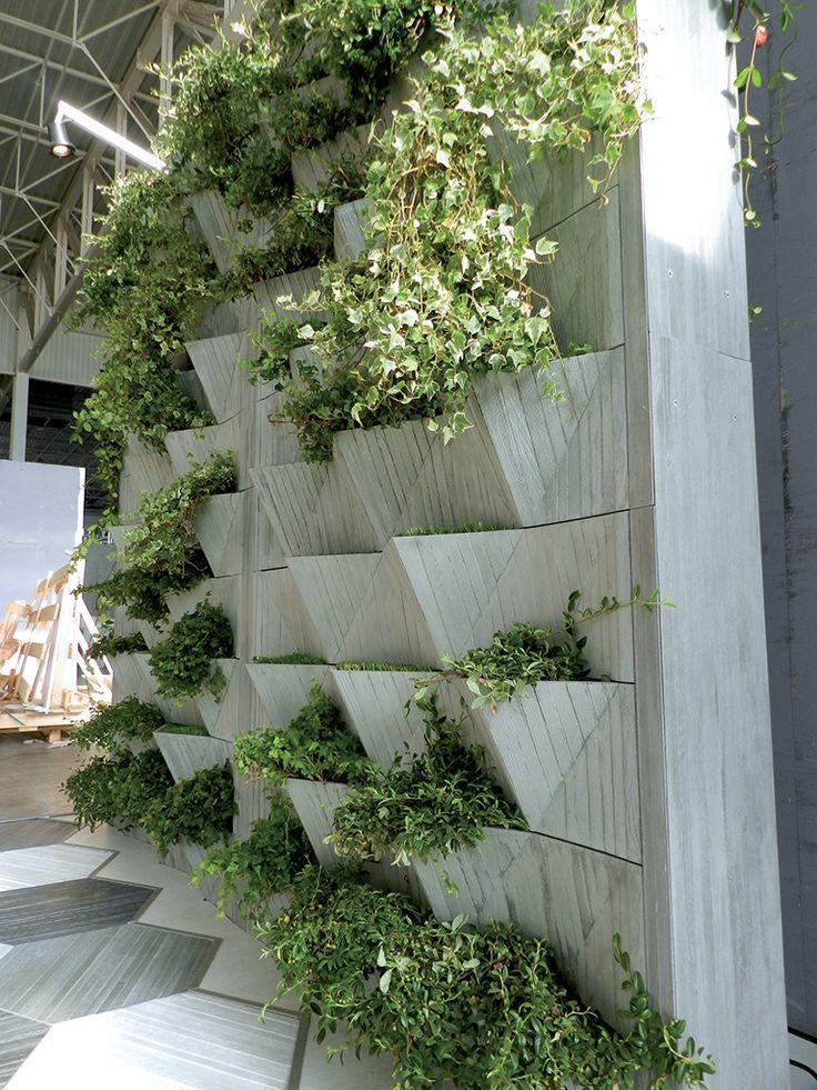 фото и схемы вертикального озеленения участка пирог румяной