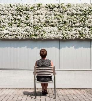 37 besten vertikaler garten bilder auf pinterest balkon terrasse und garten pflanzen. Black Bedroom Furniture Sets. Home Design Ideas