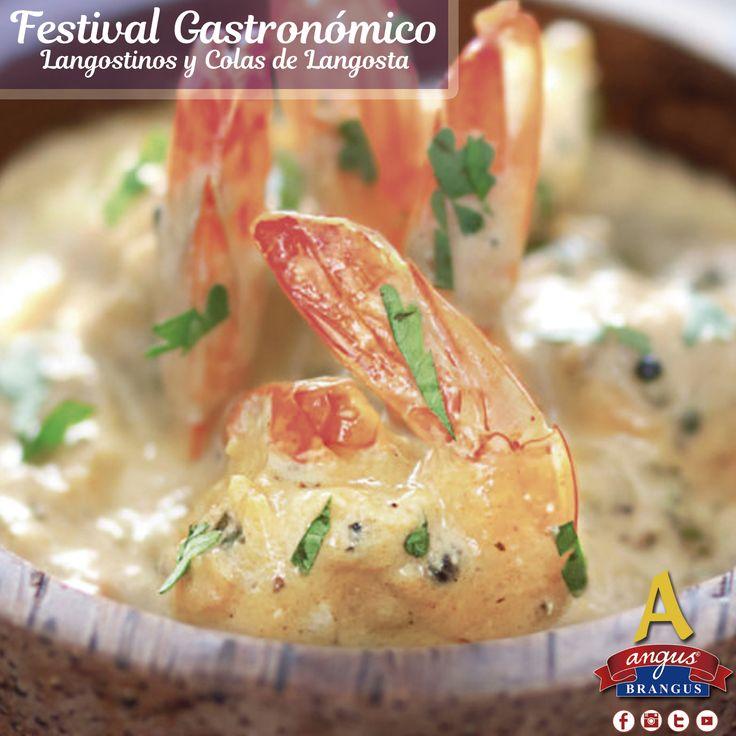 Hoy sugerimos Cazuela de Langostinos en Coco, preparada con salsa bechamel, pasta de tomate y al gratín. Preparada durante nuestro festival gastronómico, Langostinos y Colas de Langosta.   Reservas: 2321632 - 310 7006602. www.angusbrangus.com.co Cra. 42 # 34 - 15 / Vía las Palmas.  #restaurantesmedellin #AngusBrangus #parrilla #medellíntown #medellíncity #restaurantesrecomendados #delicioso #foodlovers #quehacerenmedellin #dondecomerenmedellin #deliciasmedellin #meatlover #traditionalfood…