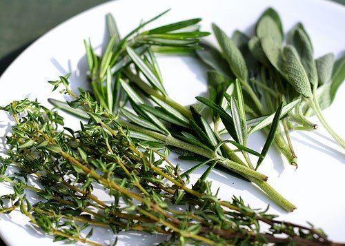 Orégãos, tomilho, alecrim, louro. Uma simples pitada com uma destas ervas-aromáticas pode mudar para melhor um prato que, antes, prometia monotonia. Seguindo regras simples podemos tornar a cozinha numa pequena oficina de secagem de ervas aromáticas.