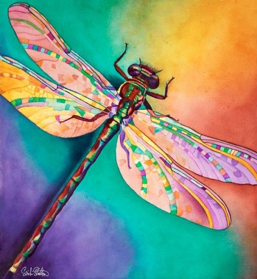 """""""Illusion"""" ~ Dragonfly Watercolor by Sinclair Stratton, Pet Portrait Artist"""