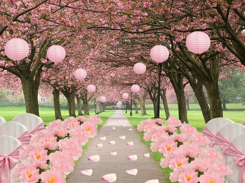 Words can not describe how beautiful I think this is.  The heart shaped petals, the paper lanterns, the Cherry Blossoms... Blissed out.