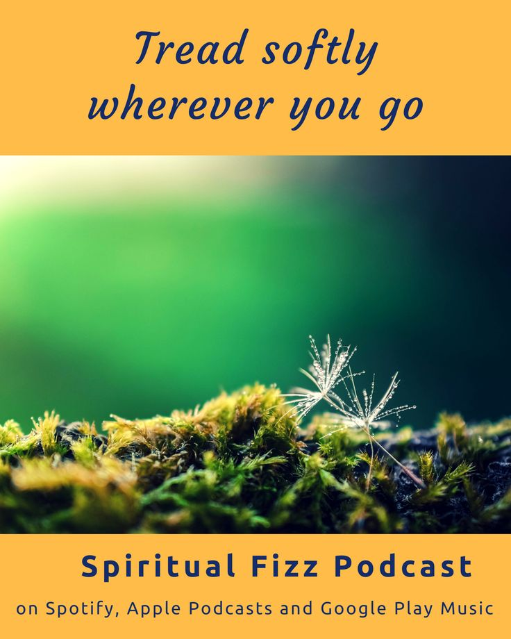 Tread softly wherever you go. Check out the Spiritual Fizz podcast on Spotify, Apple Podcasts, and Google Play Music.  #spiritual #podcast #enlightenment #zen #mindful #inspiration