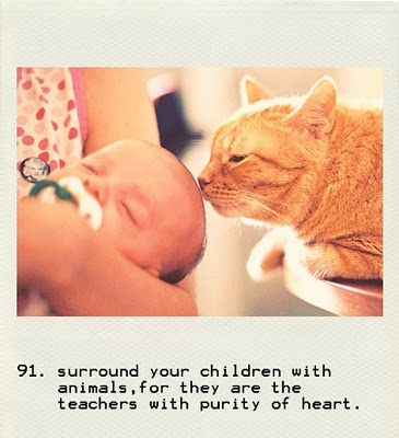 so everytime i pray that God will bless me with children, in the same prayer I ask that they are not allergic to animals lol :) I want to share that love with them <3