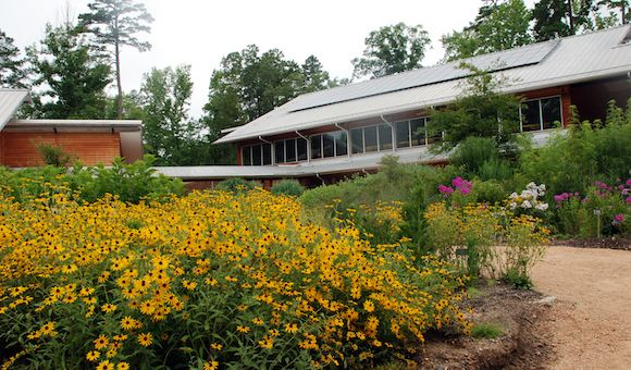 9 Best Things To Do Around Town Images On Pinterest Chapel Hill Nc Durham And North Carolina