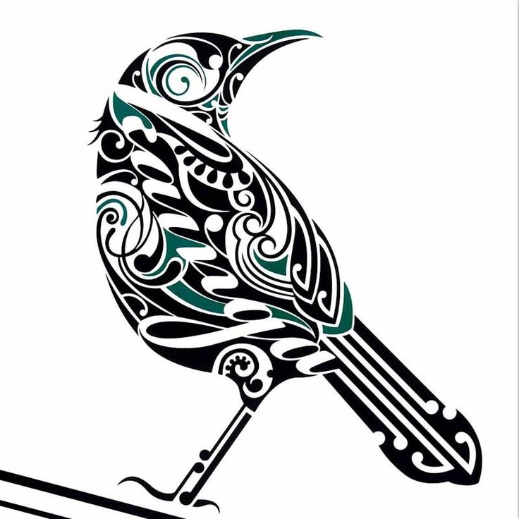 Tattoo Designs Nz: 82 Best Images About NZ CREATURES For 3D On Pinterest