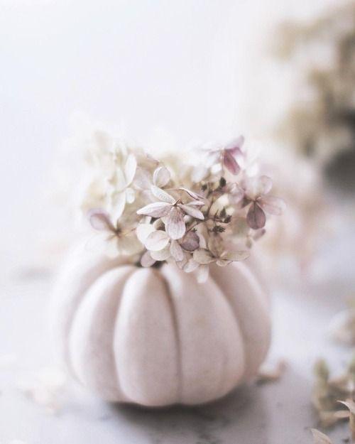 Autumn softness |  feminin_grace