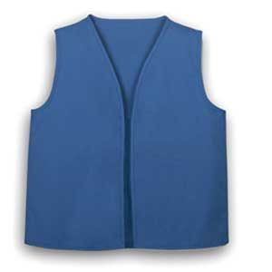 OFFICIAL GS DAISY VEST- Eleanor doesn't have one yet. I saw Amazon had matching doll ones.