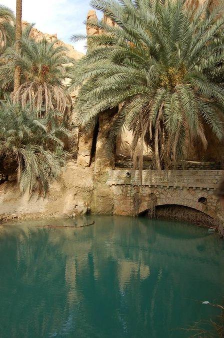 Chebika Oasis in the sahara desert,Tunisia