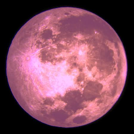 Friday April 6th, 2012: FULL PINK MOON -This name came from the herb moss pink, or wild ground phlox, which is one of the earliest widespread flowers of the spring. Other names for this month's celestial body include the Full Sprouting Grass Moon, the Egg Moon, and among coastal tribes the Full Fish Moon, because this was the time that the shad swam upstream to spawn.