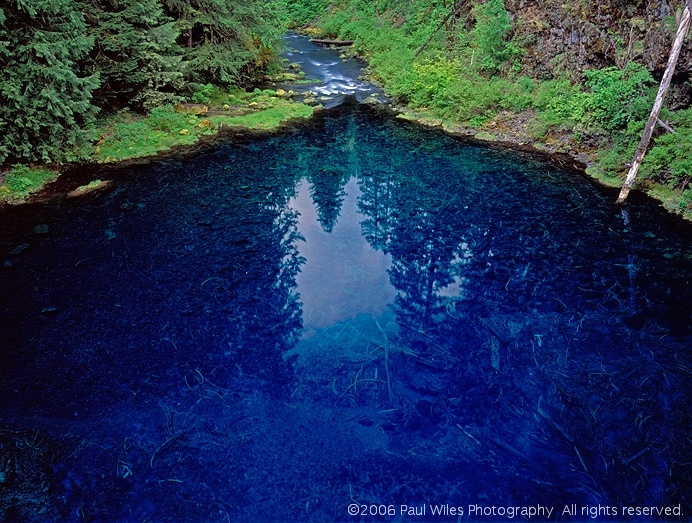 This is the Tamolitch Pool, in Oregon.  I want to go here someday .. and witness that spectacular blue water!