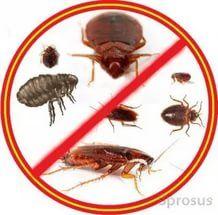 Уничтожение насекомых всех видов  Уфа  Уничтожение насекомых всех видов: тараканы, клопы, муравьи, мокрицы, комары, клещи и т.д. А также грызунов всех видов. Обработка приусадебных участков, домов, нежилых помещений, квартир. Качество, гарантия, выезд. Цена от 15 руб/кв.м.  Работаем  круглосуточно.