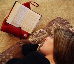 AWEsome!!!  Book Seat.  All of the readers in my life may be getting one of these for Christmas!!! Love!: Http Thebookseat Com, One Thebookseat Com, Books Love, Books Seats