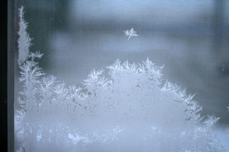 Jégvirág