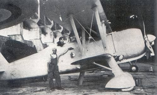 Rare picture of the Fiat Cr-42 captured by French in June 1940 , the aircraft was repainted but never tested .