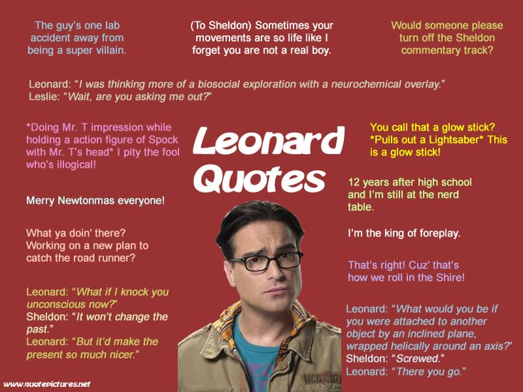 The Big Bang Theory - Leonard Quotes