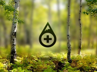 New Summits Travel Logo  by Seth Jenks