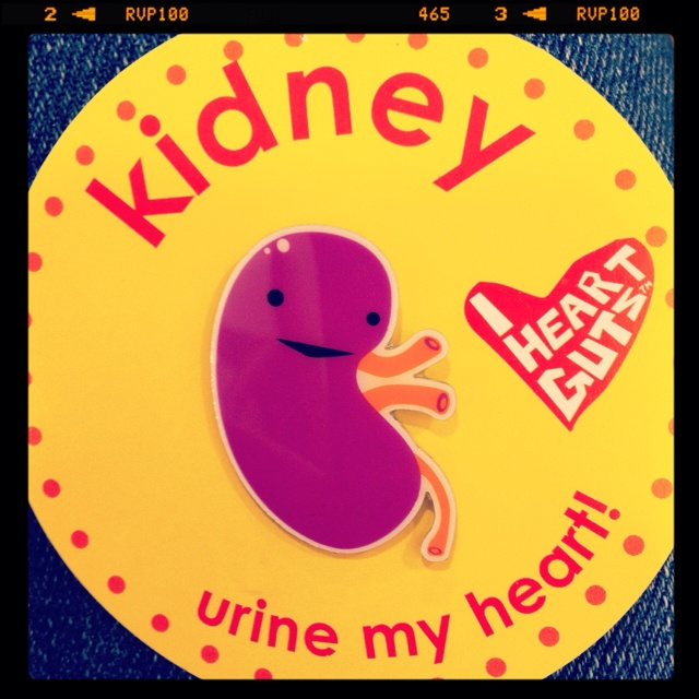 Kidney Pins for the transplant coordinator and surgeons!