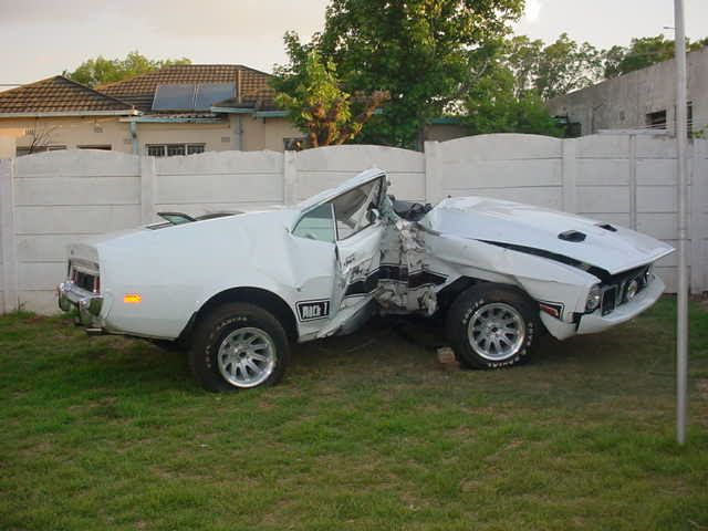 This is what the Mach 1 looks like after it was removed from the tree.