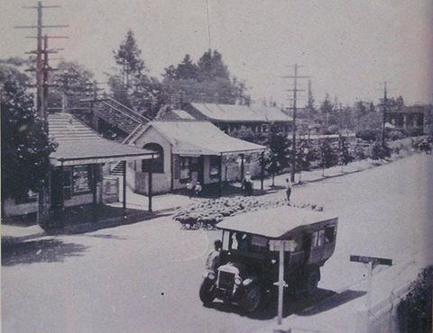 Blackheath, in the Blue Mountains of NSW, Local history. (Photo undated) possibly in the late 1920's. v@e.