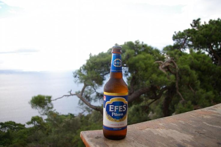 The grounds of the Efes Brewery were amazing. Imagine beer tasting in sunken gardens.