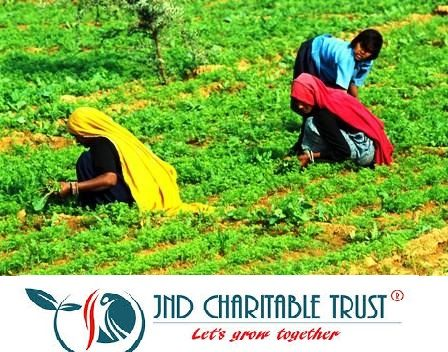 JND Charitable Trust will help fill the void and act as an agent to tell the farmers how they can better use their land and resources for better productivity.