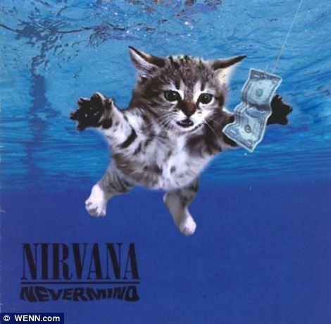 Nirvanaにマイケルジャクソン! 超有名アルバムカバーをニャンコでリメイクしたらこんなに可愛くなっちゃった!!
