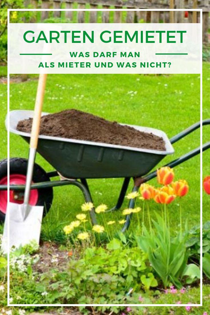 Was Darf Man Als Mieter Im Garten Machen Und Was Nicht Garten Gartengestaltung Gartenpflege