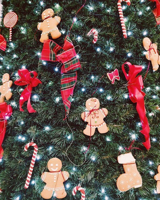 What happens under the mistletoe stays under the mistletoe.  . . . . . Christmas #ChristmasSpirit #ChristmasLoading #ChristmasFun #ChristmasCheer #ChristmasMood #ChristmasMagic #ChristmasIsComing #ChristmasWish #ChristmasLove #Christmassy #ChristmasVibes #ChristmasMusic #ChristmasStory #ChristmasParty #decoracion #AdventCalendar#fairylights #HolidaysAreComing #ChristmasAroundTheCorner #ChristmasTraditions #chocolate
