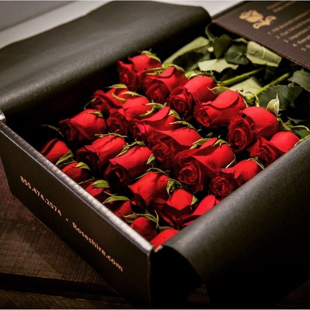 Love In A Box Totally Infatuated With These Roses Their Gift