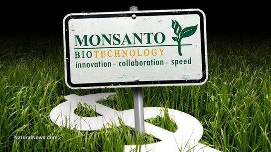 How Monsanto and biotech companies violate the Nuremberg Code | GarryRogers Nature Conservation