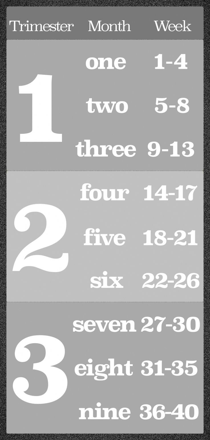 A gray card with the first quarter, the second quarter and the third quarter of …   – Understanding Babies